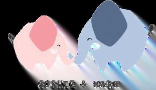 Sophie & Mark logo transparent web